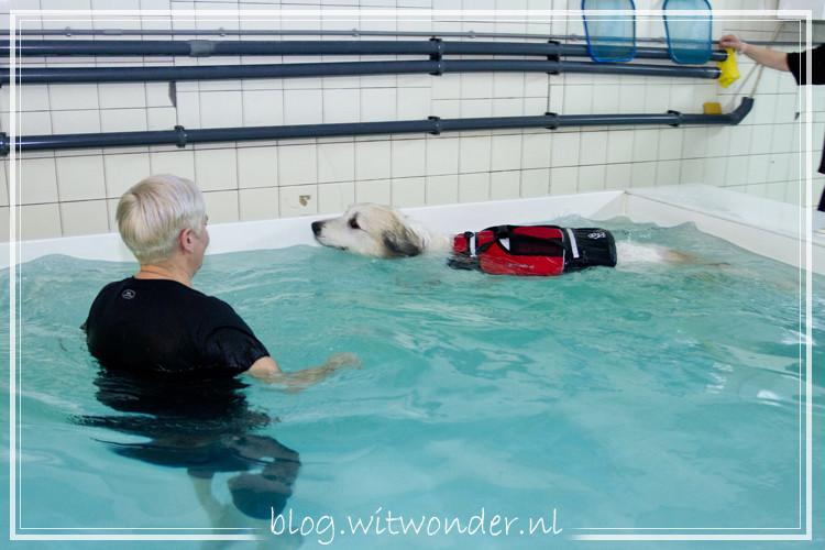 Noor-zwemmen